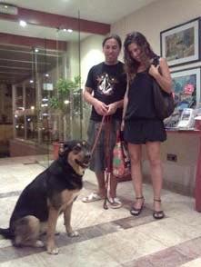 Perro Grande en Hotel Gandia